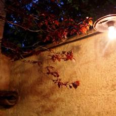 Detalle patio