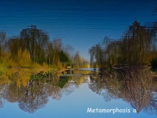 Metamorphosisa