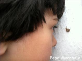 Pepe Morenoa