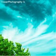 TraverPhotographyb