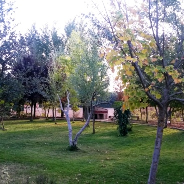Jardín en Otoño