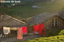 Colores de Boal