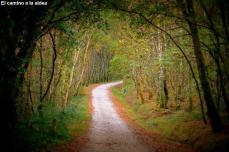 El camino a la aldea