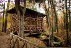 La casita en el bosque