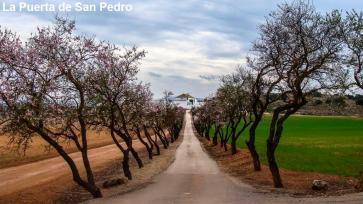La Puerta de San Pedro