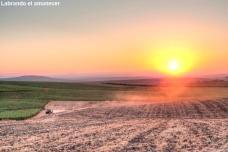 Labrando el amanecer