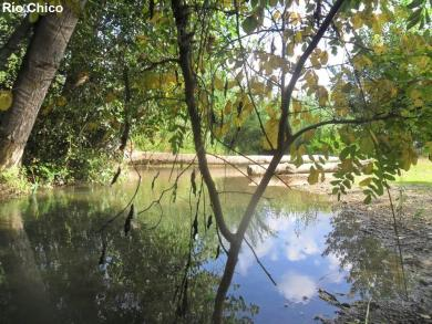 Río Chico