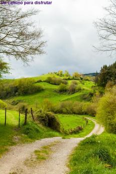 Un camino para disfrutar